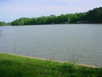 Waterfront For Sale: Lot 125 Sandy Run Drive