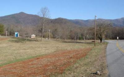 Young Harris Residential Lots & Land For Sale: Highway 76