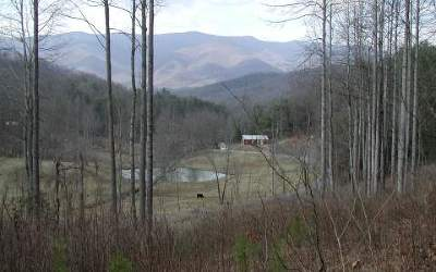 Hayesville Residential Lots & Land For Sale: Cold Branch Road