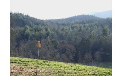 Murphy NC Residential Lots & Land For Sale: $29,100