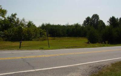 Young Harris Residential Lots & Land For Sale: Highway 17/69