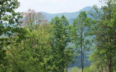 Young Harris Residential Lots & Land For Sale: Lot 1 Trails End