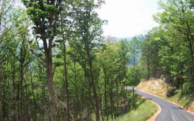 Young Harris Residential Lots & Land For Sale: Lot 2 Trails End