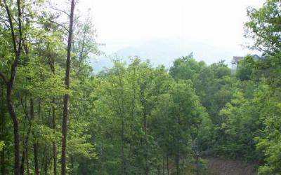 Young Harris Residential Lots & Land For Sale: Lot 6 Trails End
