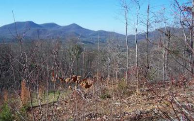Young Harris Residential Lots & Land For Sale: Lot 7 Trails End