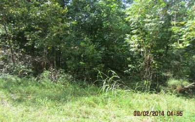 Ellijay Residential Lots & Land For Sale: 1407 Mallory