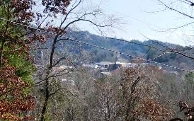 Murphy NC Residential Lots & Land For Sale: $11,250