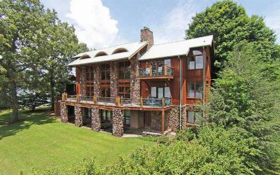 Hayesville Single Family Home For Sale: 353 Licklog Road