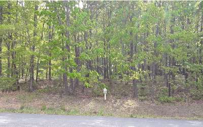 Blairsville Residential Lots & Land For Sale: Lt10 Serenity Ridge