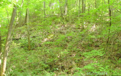 Ellijay Residential Lots & Land For Sale: Mollie Mountain Tr