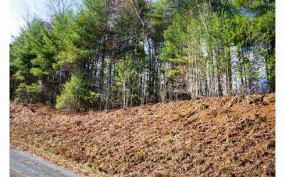 Murphy NC Residential Lots & Land For Sale: $3,999