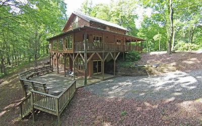 Hayesville Single Family Home For Sale: 3147 Old Hwy 64 West