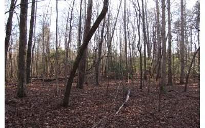 Ellijay Residential Lots & Land For Sale: 66 Red Hawk Trail