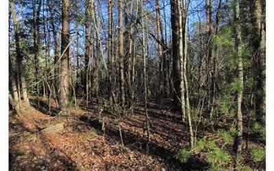Ellijay Residential Lots & Land For Sale: 65 Red Hawk Trail