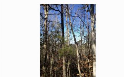 Ellijay Residential Lots & Land For Sale: L681 Coosawattee
