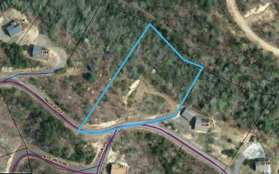 Residential Lots & Land For Sale: Tbd Wildcat Drive