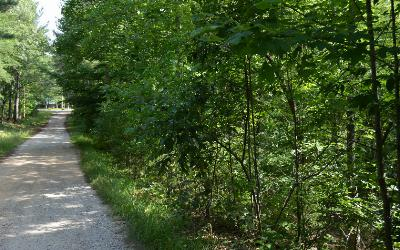 Union County Residential Lots & Land For Sale: Cozy Cove Ldg Lot 1a