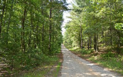 Union County Residential Lots & Land For Sale: Cozy Cove Ldg Lot 1b