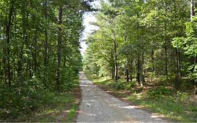 Union County Residential Lots & Land For Sale: Cozy Cove Ldg Lot 2