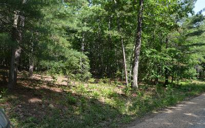 Union County Residential Lots & Land For Sale: Cozy Cove Ldg Lot 4