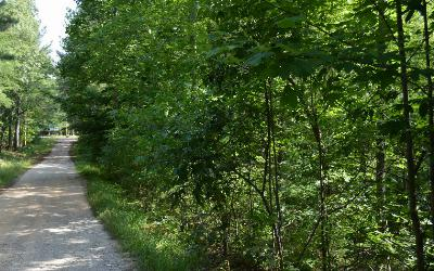 Union County Residential Lots & Land For Sale: Cozy Cove Ldg Lot 6