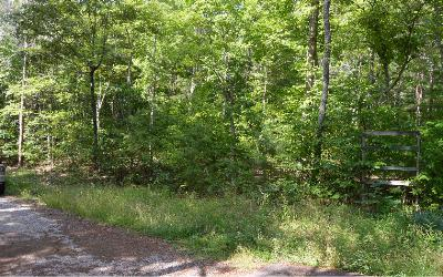 Residential Lots & Land For Sale: Cozy Cove Ldg Lot 7