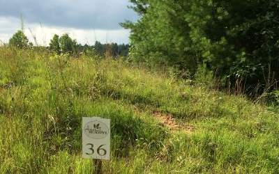 Residential Lots & Land For Sale: Lt 36 Pleasant Meadows