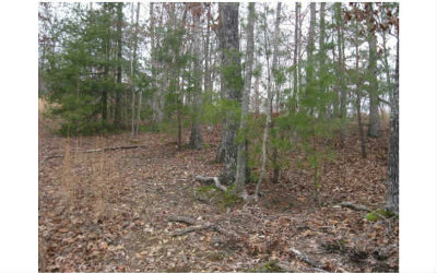 Blairsville Residential Lots & Land For Sale: Lt49 Barnes Mill Road
