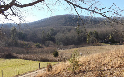 Suches Residential Lots & Land For Sale: Luther Cain-17.76ac