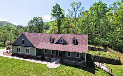 Hayesville Single Family Home For Sale: 68 Burch Cove Overlook