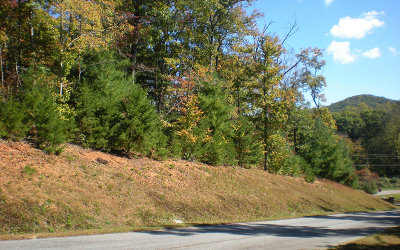 Ellijay Residential Lots & Land For Sale: Lot 1 Frances Drive