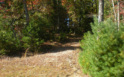 Ellijay Residential Lots & Land For Sale: Lot 3 Robert Drive