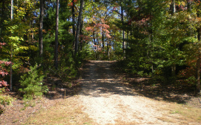 Ellijay Residential Lots & Land For Sale: Lot 4 Robert Drive