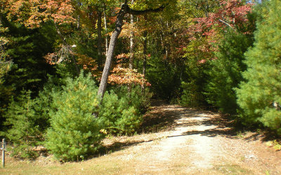 Ellijay Residential Lots & Land For Sale: Lot 5 Robert Drive
