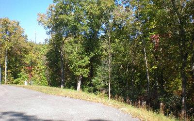Ellijay Residential Lots & Land For Sale: Lot 8 Robert Drive