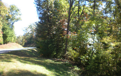 Ellijay Residential Lots & Land For Sale: Lot10 Robert Drive