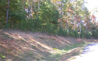 Ellijay Residential Lots & Land For Sale: Lot12 Frances Drive