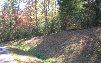 Ellijay Residential Lots & Land For Sale: Lot13 Frances Drive