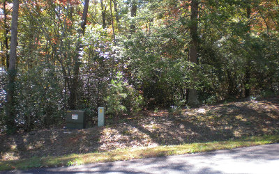 Ellijay Residential Lots & Land For Sale: Lot14 Frances Drive