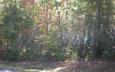 Ellijay Residential Lots & Land For Sale: Lot15 Frances Drive