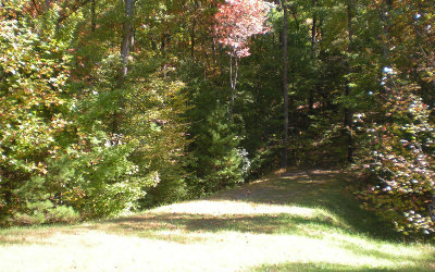 Ellijay Residential Lots & Land For Sale: Lot16 Frances Drive