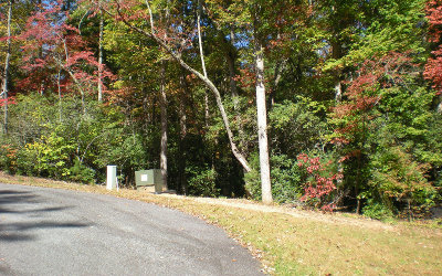 Ellijay Residential Lots & Land For Sale: Lot17 Frances Drive