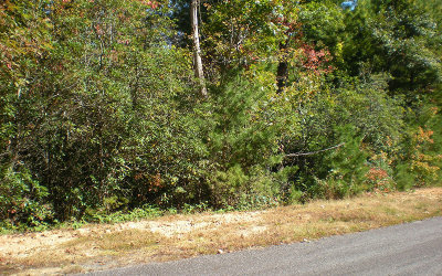 Ellijay Residential Lots & Land For Sale: Lot18 Frances Drive