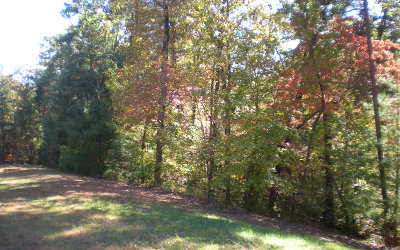 Ellijay Residential Lots & Land For Sale: Lot19 Frances Drive
