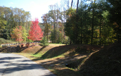 Ellijay Residential Lots & Land For Sale: Lot20 Frances Drive