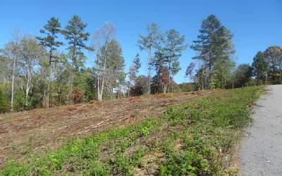 Blairsville Residential Lots & Land For Sale: Lt 2 Brookwood Hills