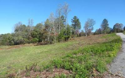 Blairsville Residential Lots & Land For Sale: Lt 3 Brookwood Hills