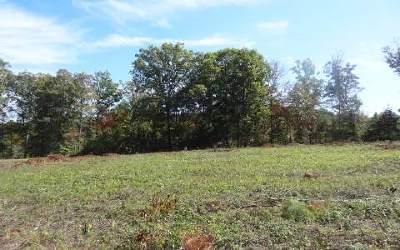 Blairsville Residential Lots & Land For Sale: Lt 8 Brookwood Hills