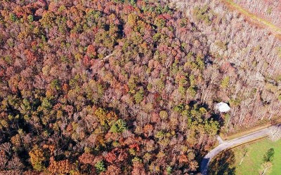 Ellijay Residential Lots & Land For Sale: Mountain Laurel Dr