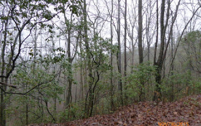 Hiawassee Residential Lots & Land For Sale: Lt 15 Red Bud Spur